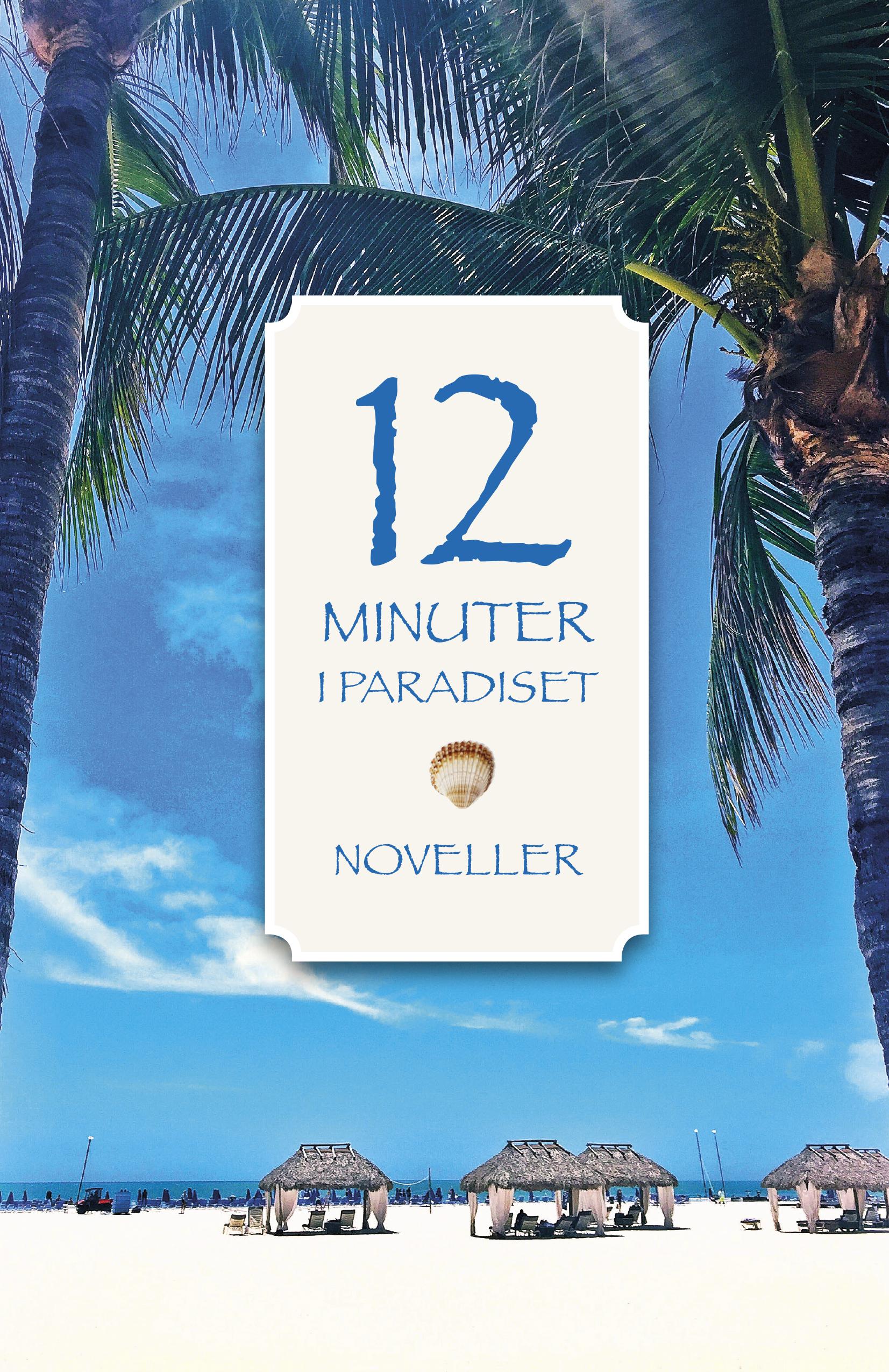 Omslag 12 minuter i paradiset